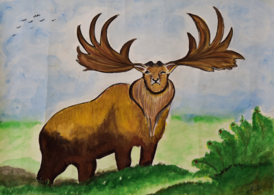 The Irish Deer (Extinct 5700 Years ago)