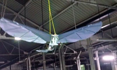 Design and Development and testing of an Ornithopter